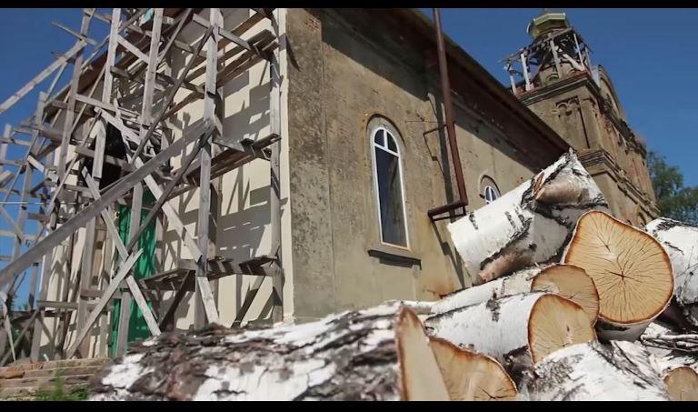 Butuci de mesteacăn lângă biserica din Șovsk